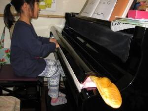 ピアノフランスパン